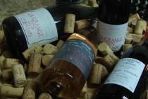 La Grange des Copains, Découvrez notre vin
